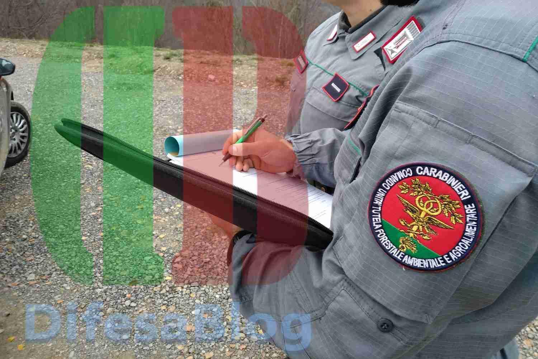 Straordinari e indennità Carabinieri Forestali